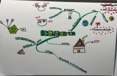 esempio mnemotecniche mappe concettuali