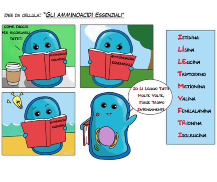 esempio mnemotecniche mnemofrasi
