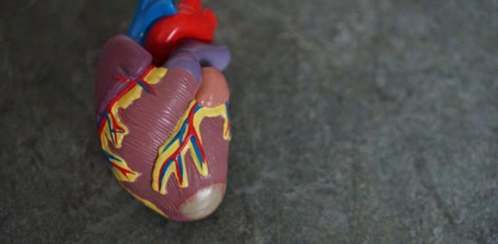 tecnico della fisiopatologia cardiocircolatoria e perfusione cardiovascolare
