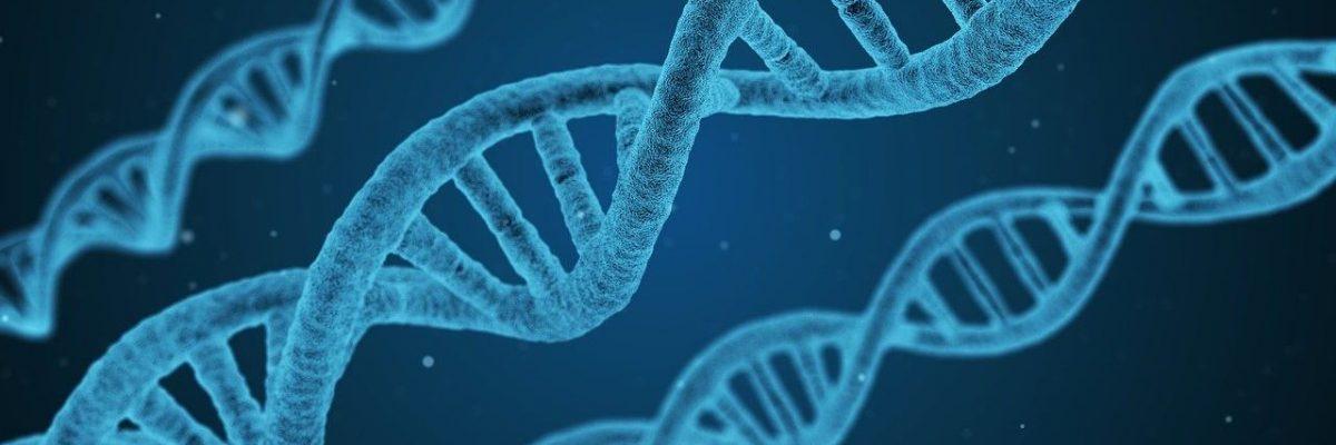 come studiare biologica per test medicina