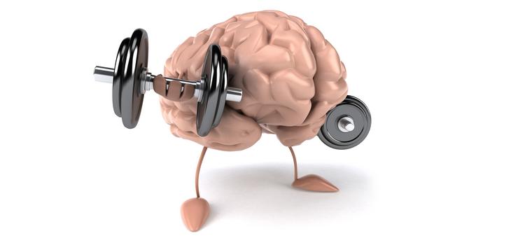 allenare il cervello per il test